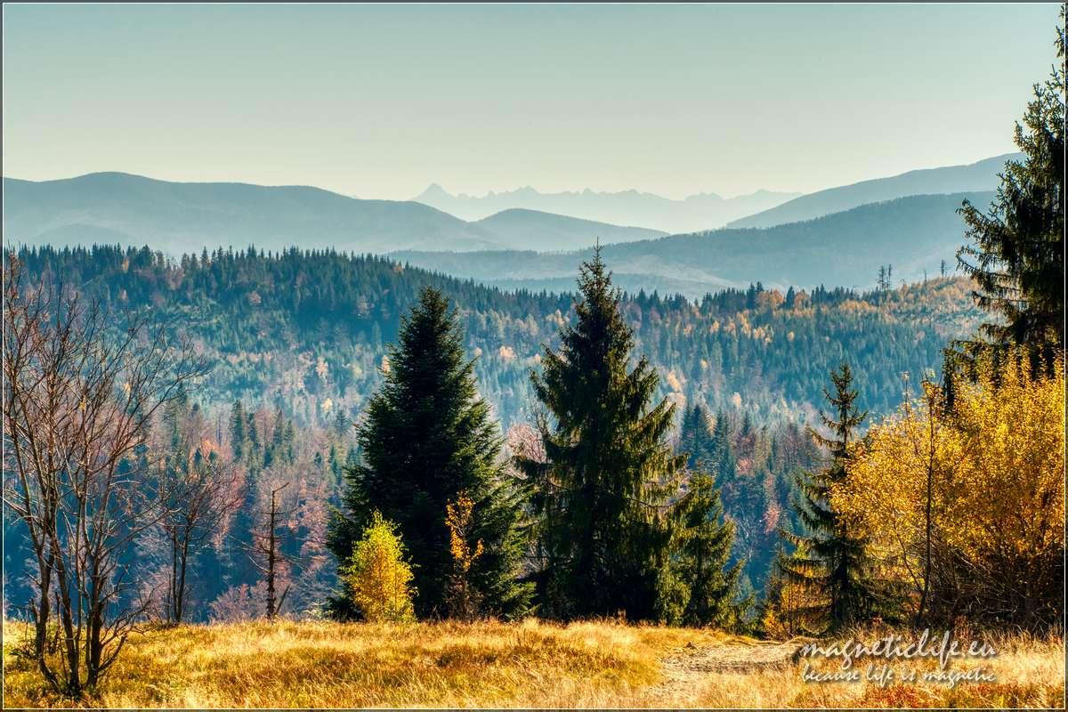 Panorama Tatr widziana zPotrójnej