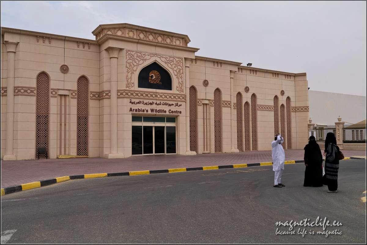 """Atrakcje turystyczne emiratu Szardża. Pawilon """"Dziki świat Arabii"""""""