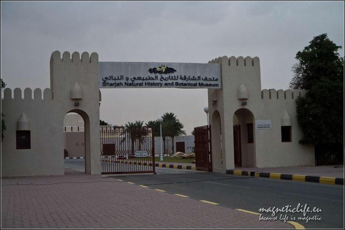 Atrakcje turystyczne emiratu Szardża. Wejście doparku