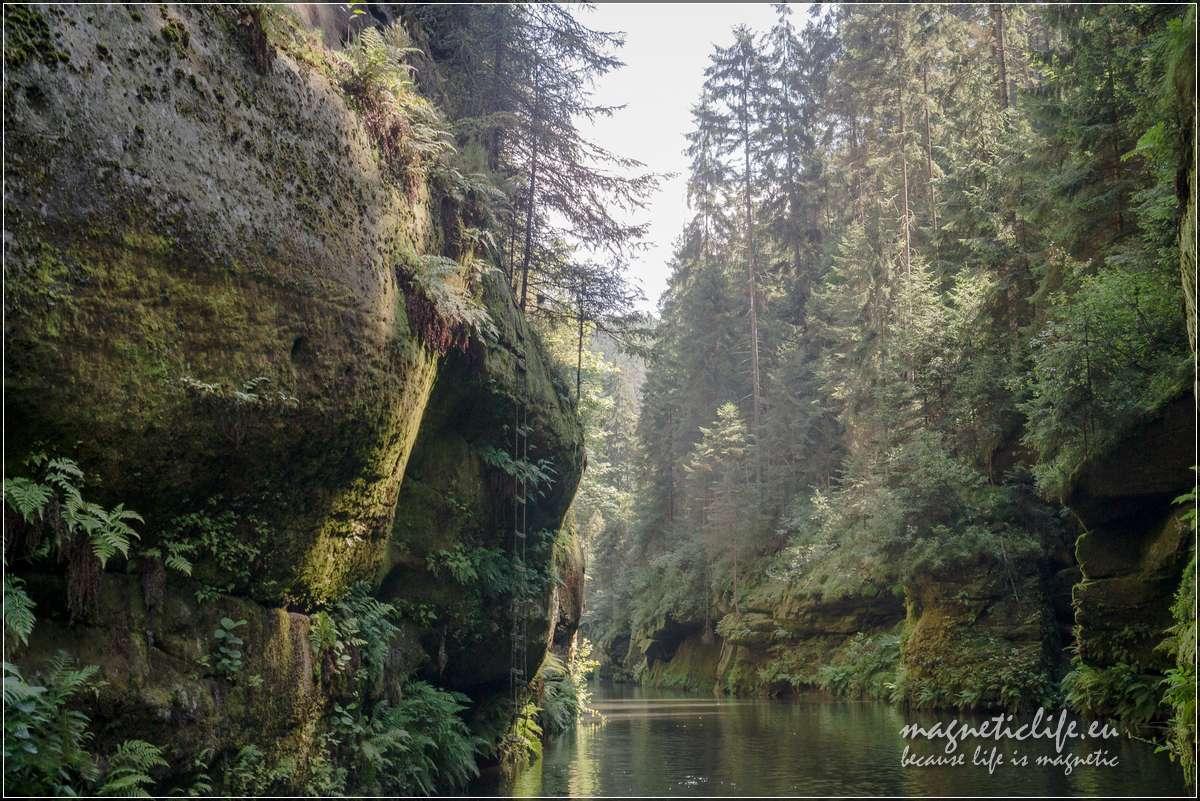 Przełom rzeki Kamenicy