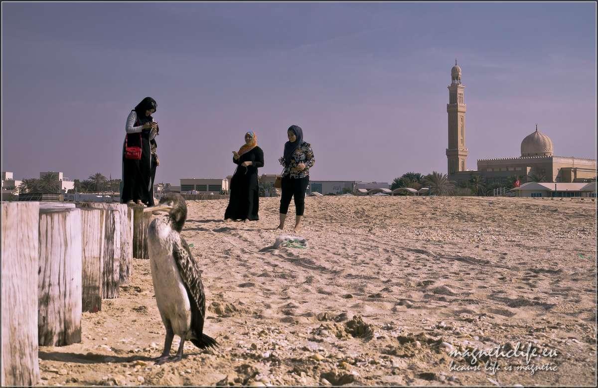 Zwiedzanie Dubaju indywidualnie, plaża Kite Beach
