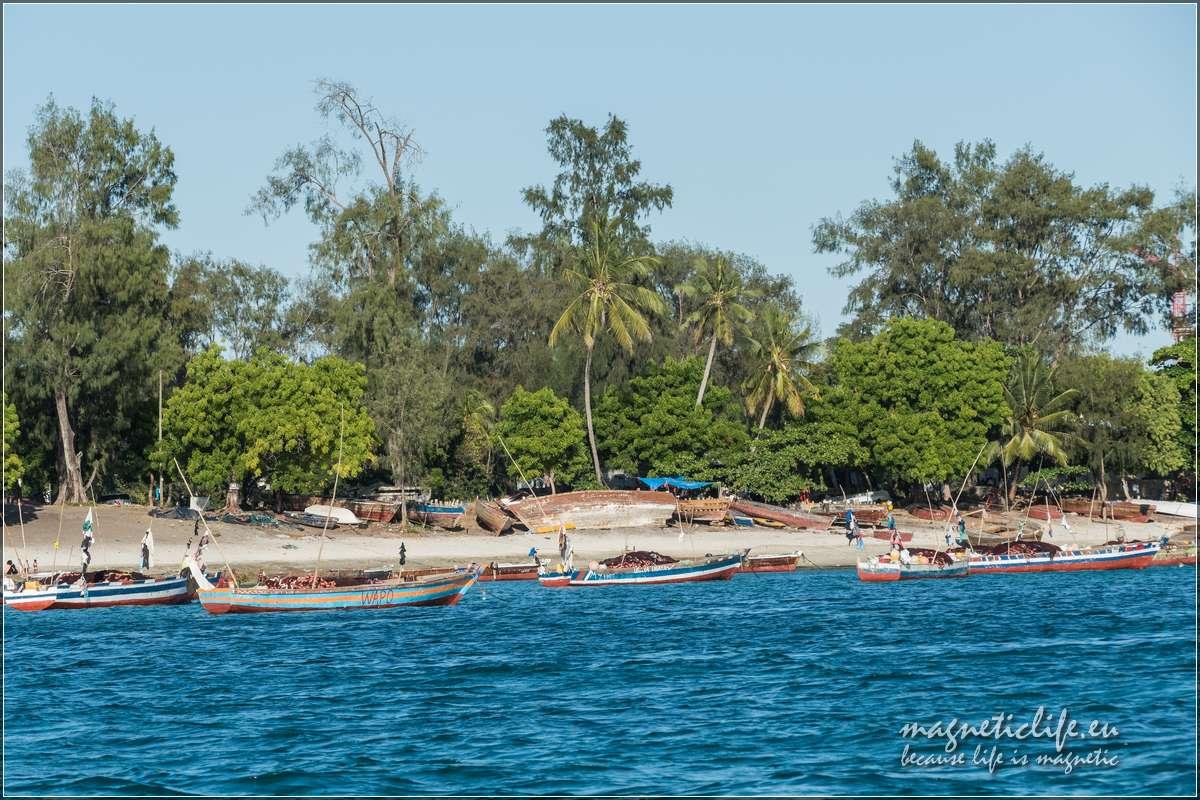 Zachodnie wybrzeże Zanzibaru. Łodzie rybaków