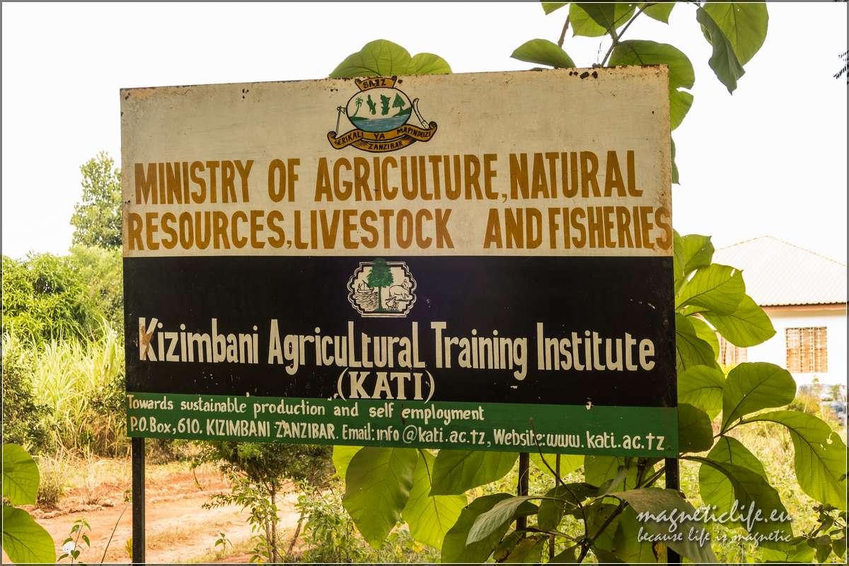 Kizimbani farma przypraw naZanzibarze