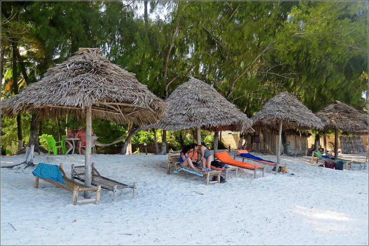 Baraka żółwie idwa oblicza Zanzibaru. Plaża