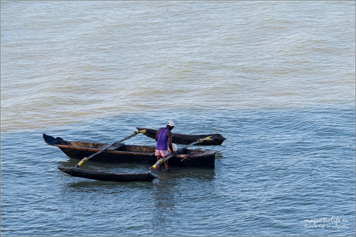 Baraka żółwie idwa oblicza Zanzibaru. Narzędzie pracy