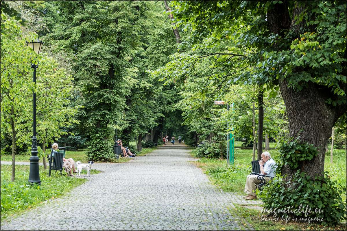 Park zamkowy wŻywcu