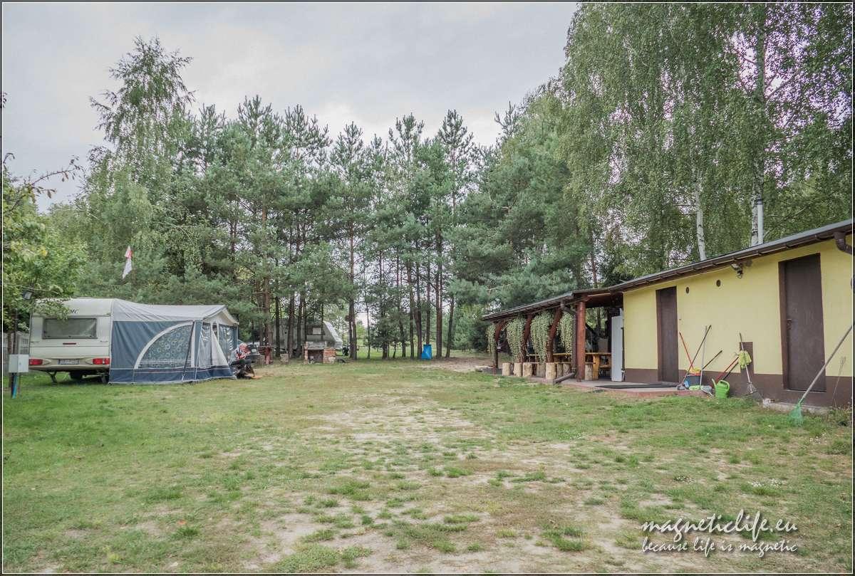 Pole namiotowe Brzozowy Zakątek
