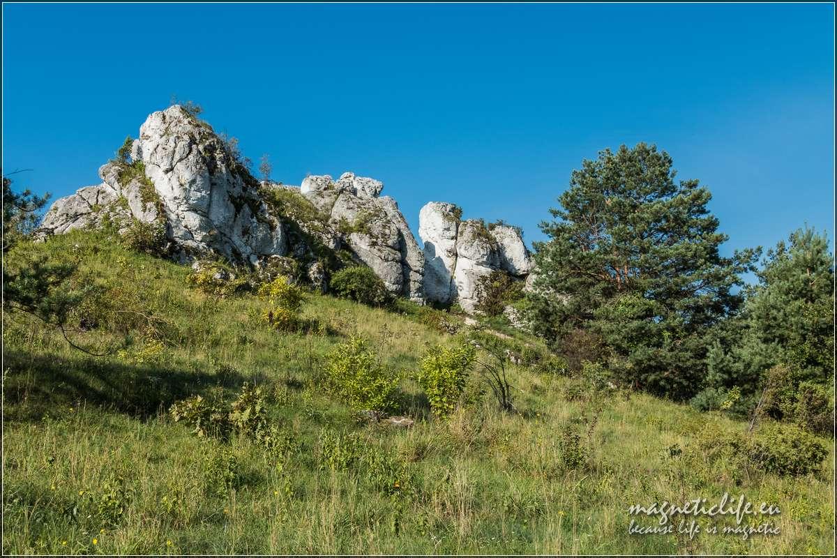 Skałki Jurajskie Góry Towarne