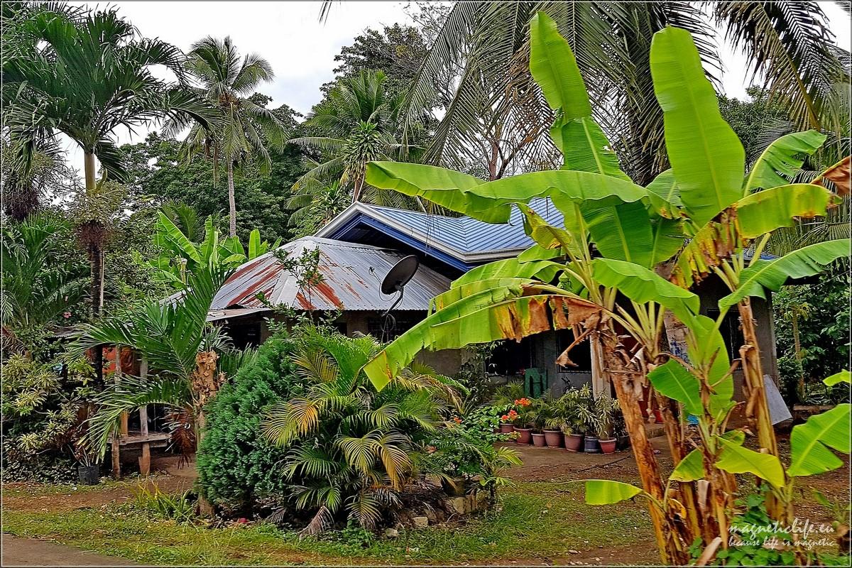 Panglao typowy dom